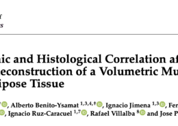 Ultrasonographic and Histological Correlation after Experimental Reconstruction of a Volumetric Muscle Loss Injury with Adipose Tissue